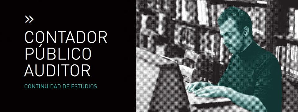 Contador Público Auditor, continuidad de estudios